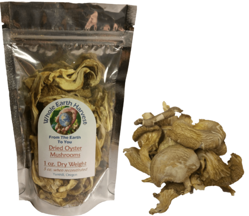 Dried Oyster Mushrooms 2